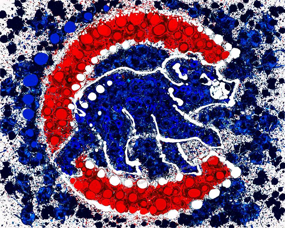 Cubs Bear Logo